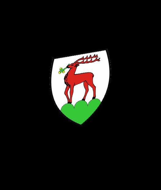 dhl jelenia-gora herb