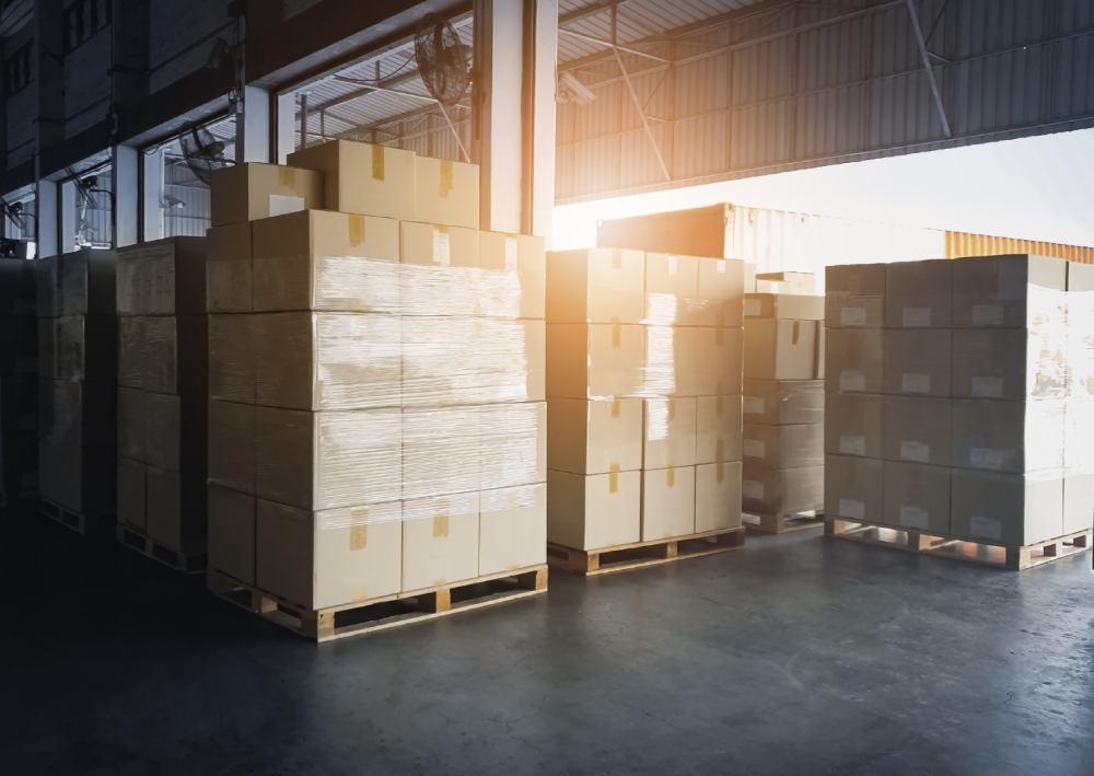 branża transportowo-spedycyjno-logistyczna