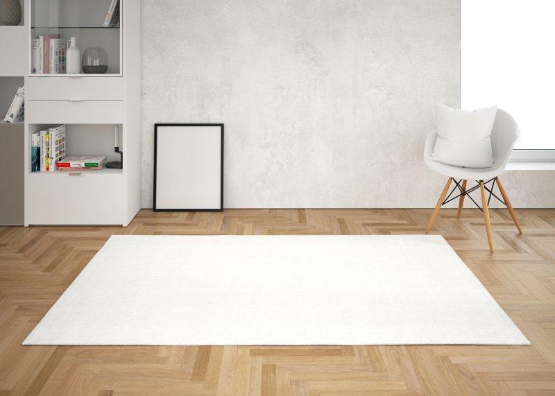 zatwiedź regulaminy i wyślij dywan